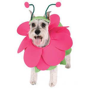 Disfraces Para Mascotas Adiestra Per